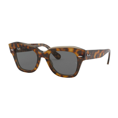 Ray-Ban Havana On Trasparent Light Bro Zonnebril RB21861292B149